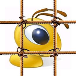 Webmoney за решеткой
