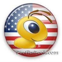 Webmoney в США